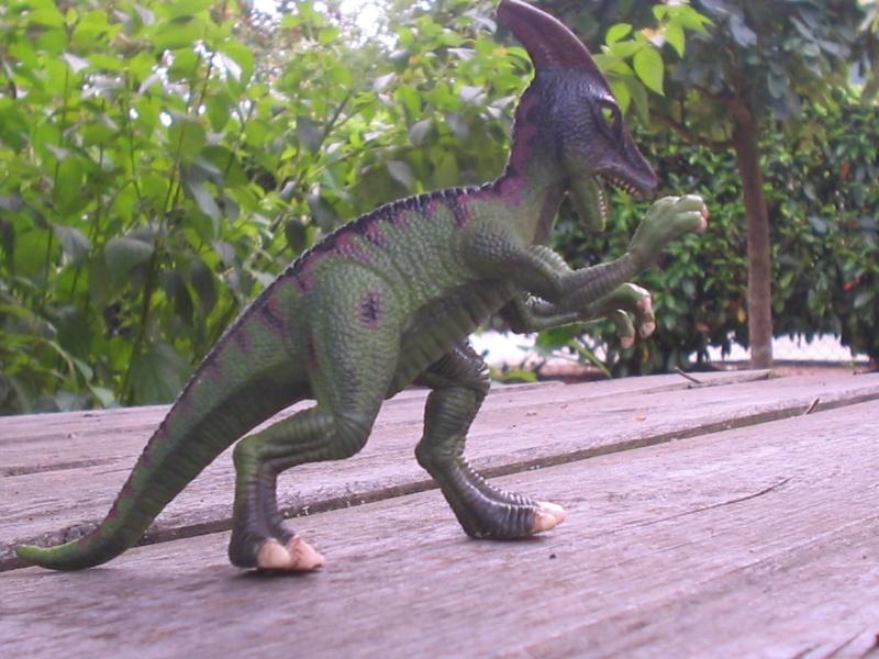 voxosaure et tour de guet HL Img_4231