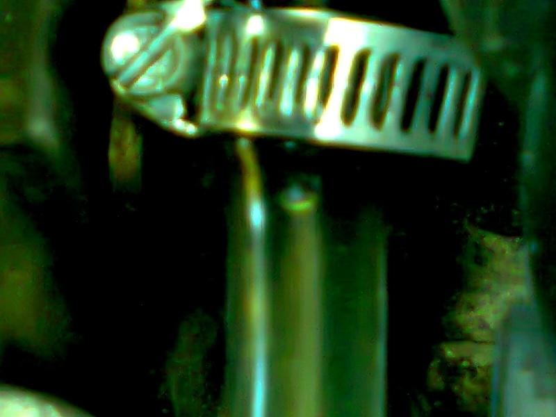 [résolu]Mauvais démarrage à froid, fuite sur capuchon noir pompe injection - Page 2 Photo015
