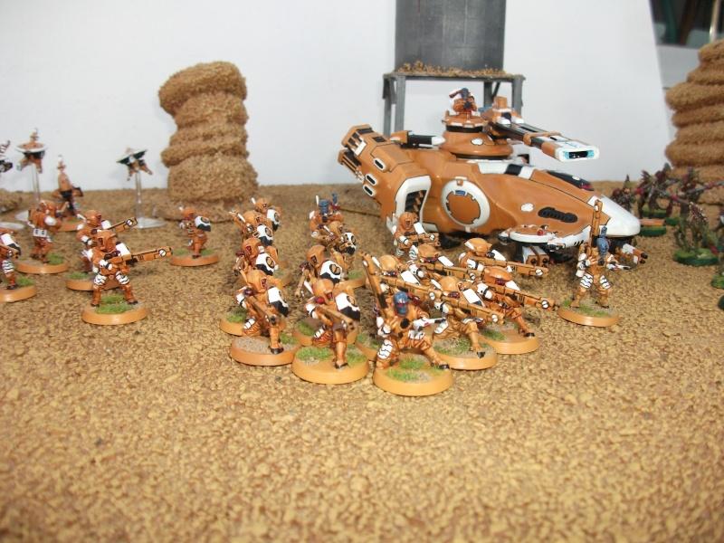 présentation Armées de nos membres et amis Dscf7922