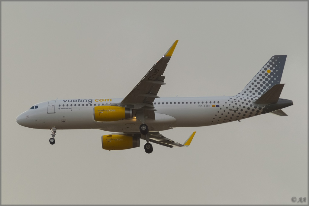 [09/04/2013] Airbus A320-232SL (EC-LUO) Vueling : Sharklets !!!!!!! _dsc5911