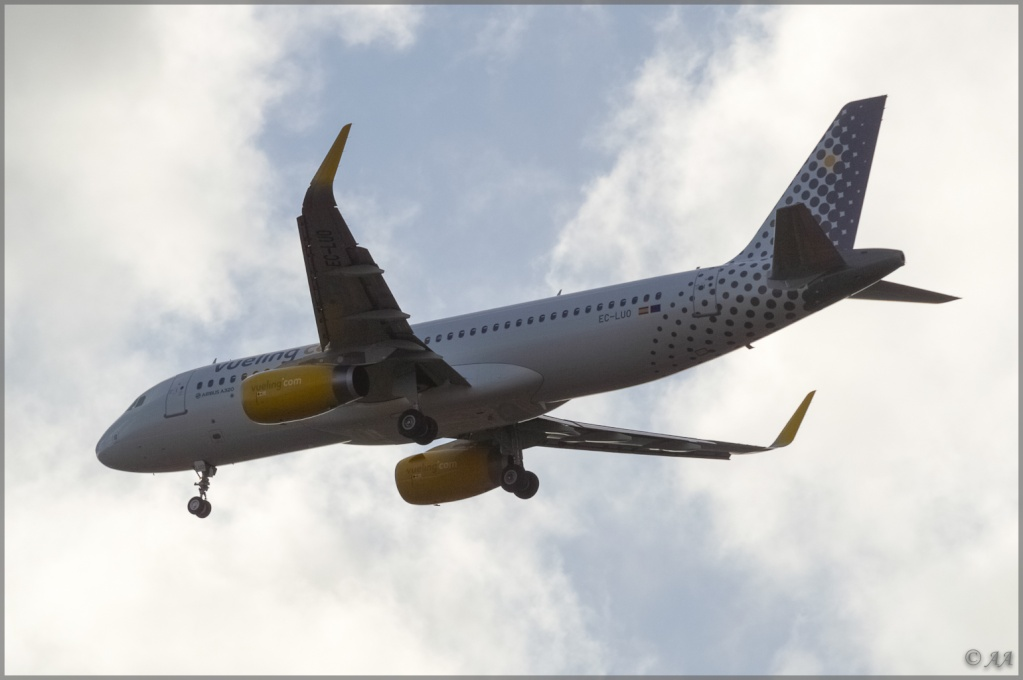[09/04/2013] Airbus A320-232SL (EC-LUO) Vueling : Sharklets !!!!!!! _dsc5912