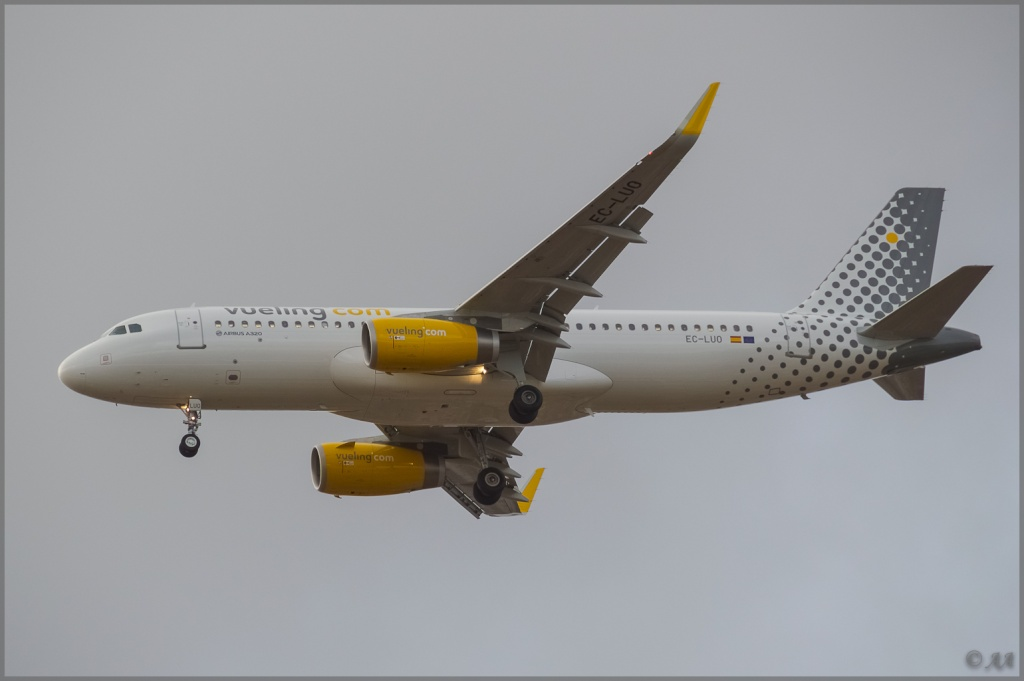 [09/04/2013] Airbus A320-232SL (EC-LUO) Vueling : Sharklets !!!!!!! _dsc5916