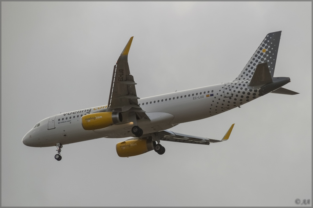 [09/04/2013] Airbus A320-232SL (EC-LUO) Vueling : Sharklets !!!!!!! _dsc5917