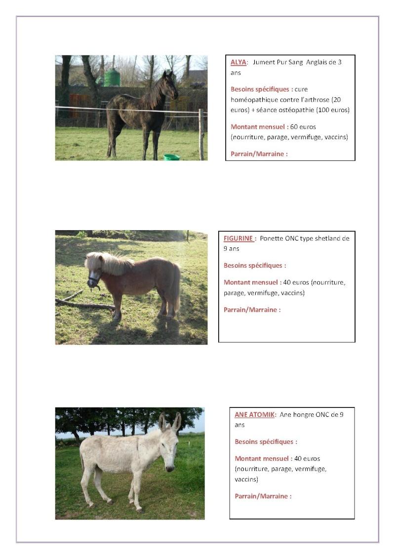 Parrainage chevaux 2013 Parrai23
