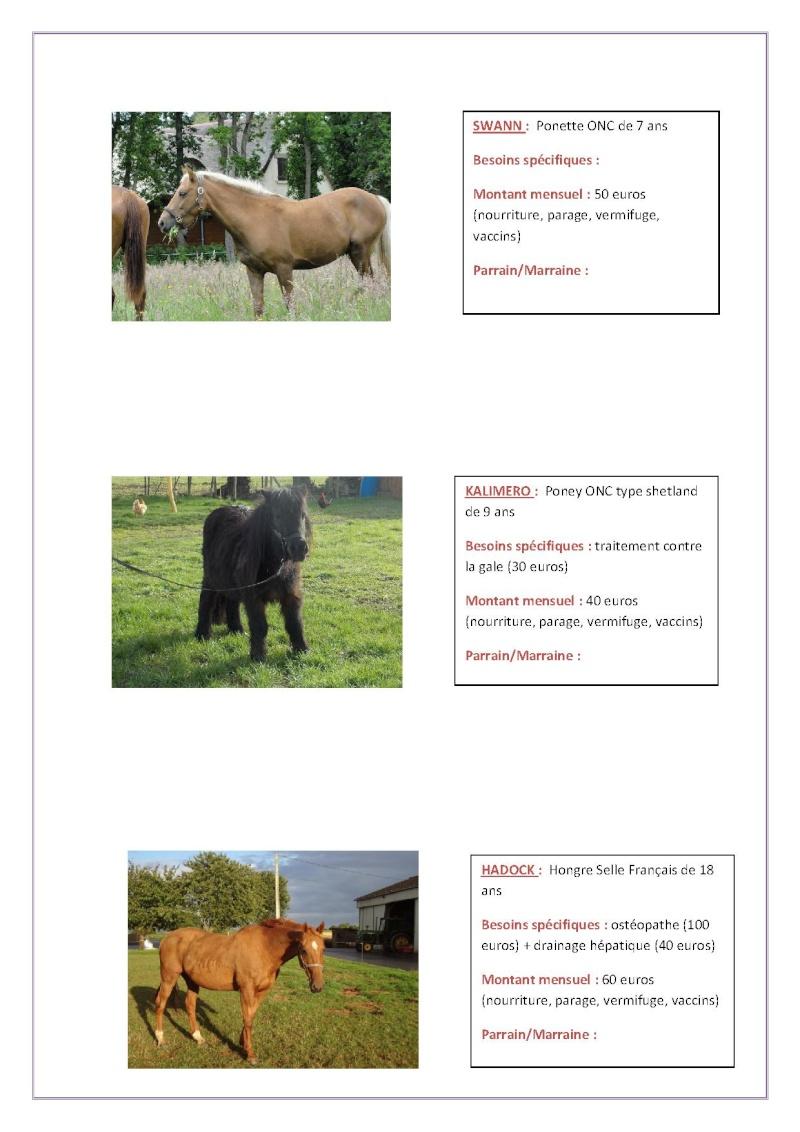 Parrainage chevaux 2013 Parrai24