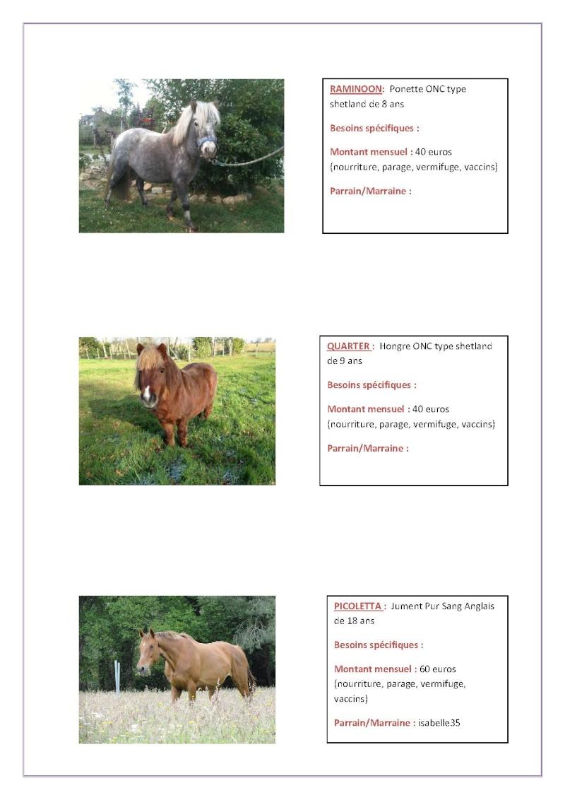 Parrainage chevaux 2013 Parrai25