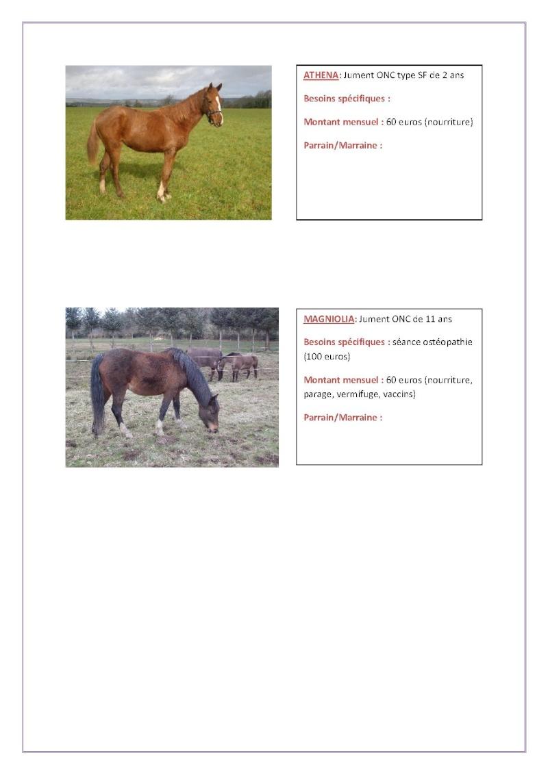 Parrainage chevaux 2013 Parrai28