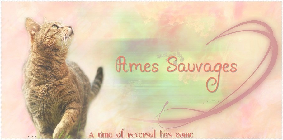 Ames Sauvages