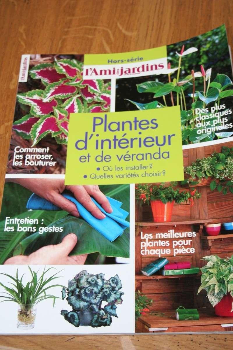 pour une fois, c pas des plantes que je me suis achetée !! - Page 2 Img_5454