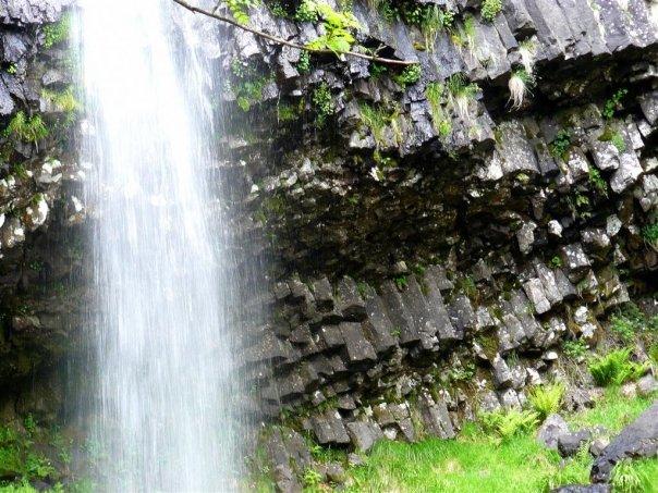 Balades dans le vert Cantal 4511_112