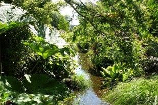 (35) Parc botanique de Haute-Bretagne - Le Châtellier 5568_113