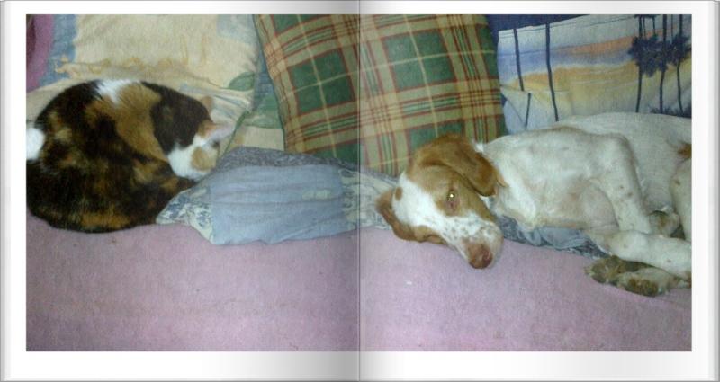 Kookie dans sa famille . - Page 4 25082011