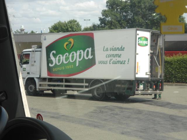Socopa (Cherré,72) Dsc01313