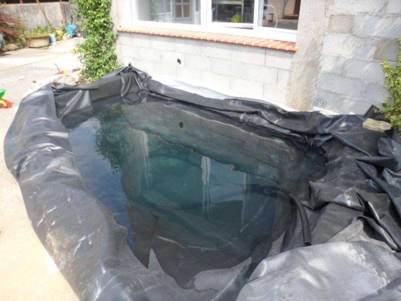 Construction bassin extérieur de Bibimawmi - Page 3 Sam_6314