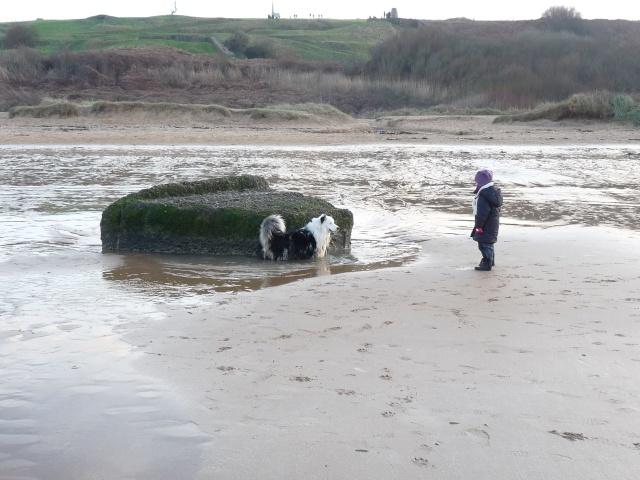 ...seul sur le sable, les pneus dans l'eau, Marco était trop beau... P1120411