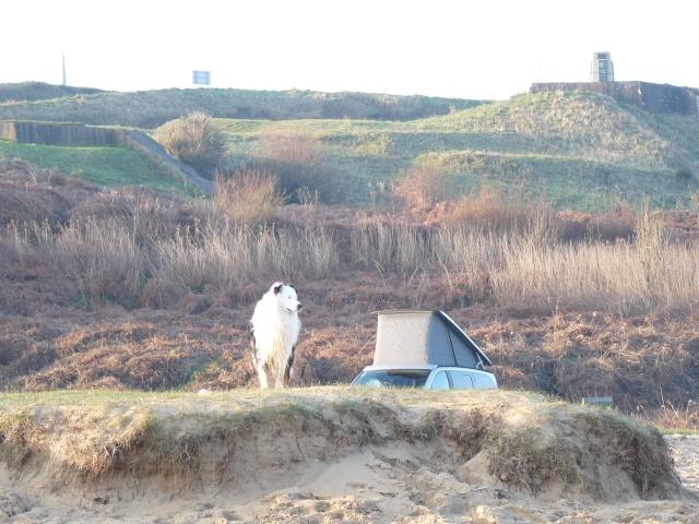 ...seul sur le sable, les pneus dans l'eau, Marco était trop beau... P1120517