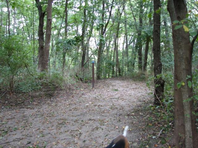 GravelClan Hunting Grounds Img_5511