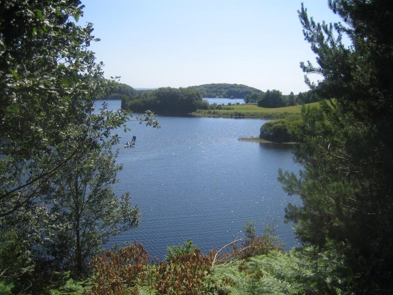 Lacs de l'Artense (La Crégut, Lastioulles...) - Page 2 Fabien47