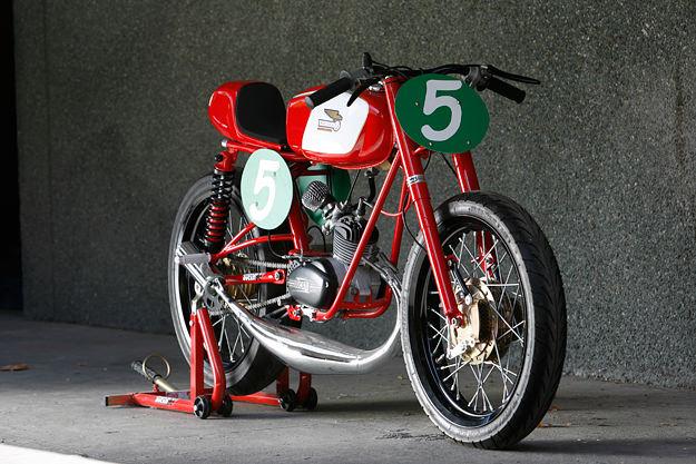 manififico tasse ritalo-spingo  Ducati10
