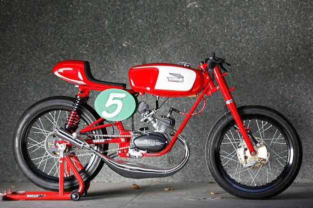 manififico tasse ritalo-spingo  Ducati11