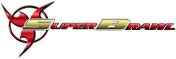 WCW Superbrawl - 24 février 2013 (Résultats) Superb10