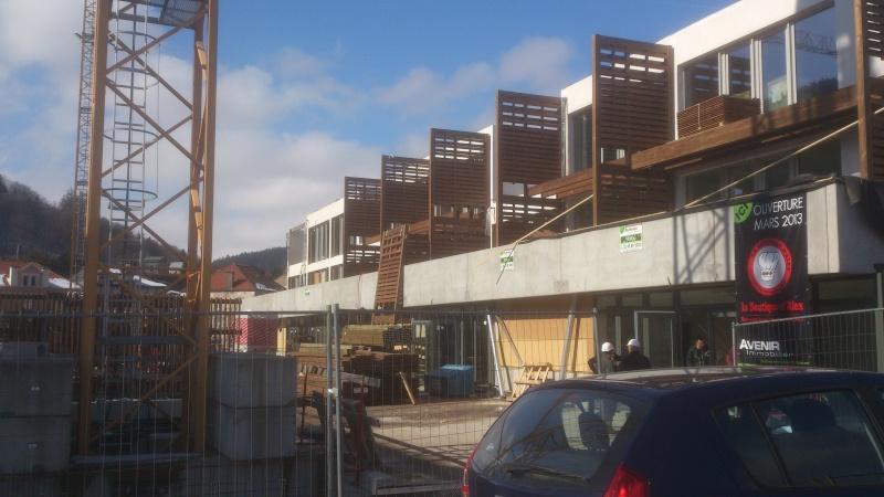 Eco Quartier de la Madeleine à Remiremont - Page 5 Dsc_0013