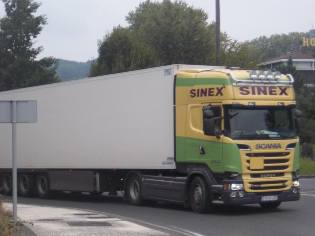 Sinex (Berlare) 95962513