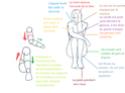 Ecrire un tutoriel pour le blog Assis_11