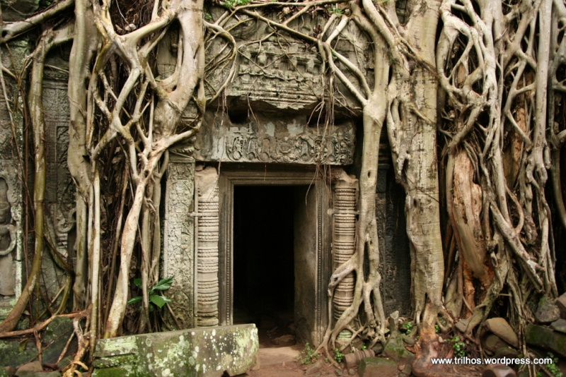 Templo da Justiça de Gaia Img_4510