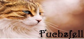 WarriorCats - Fight for the Love! Fuchsf11