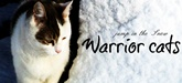 WarriorCats - Fight for the Love! Jump_t10