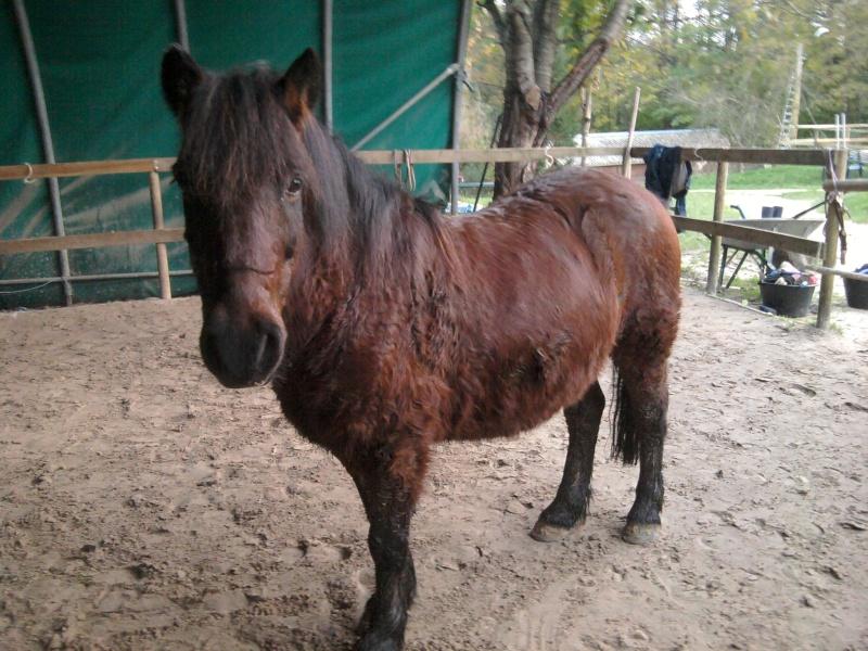 Mon gros lou Jaboune  2012-110