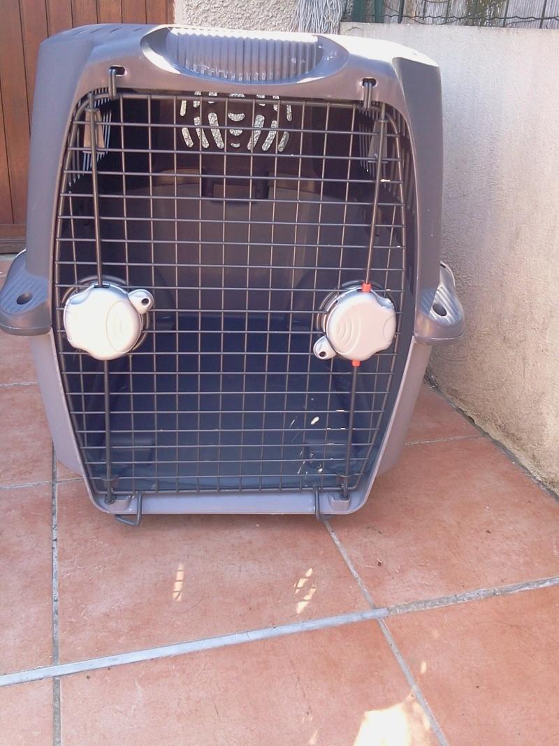 Caisse de transport PET CARGO 2013-010