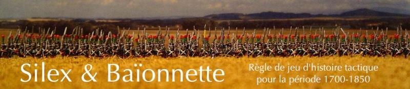 Silex & Baïonnette (napoléonien mais aussi de 1700 à 1850) Bandea12