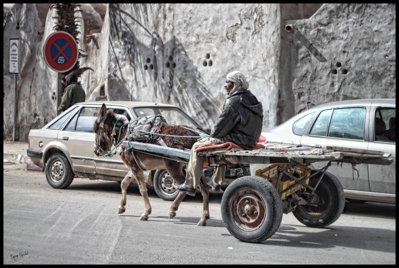 Afrique du Nord 2012. Img_0610