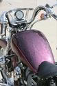 A few two wheeled treasures Sporty11