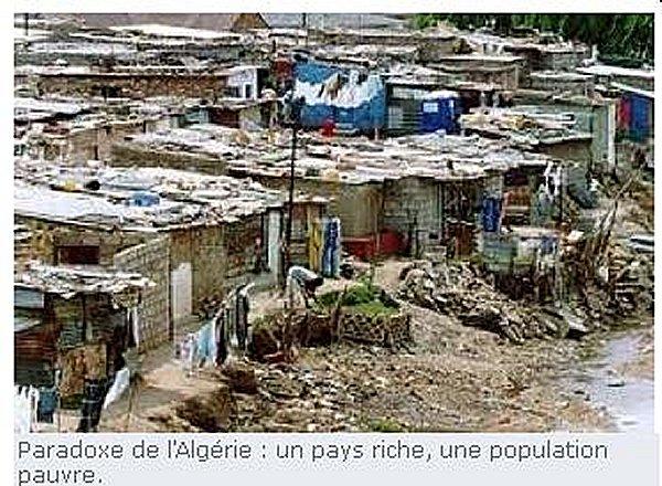 Témoignages d'Algeriens شهادات جزائريين الجزائر غنية بالغاز والبترول ... ولكن الشعب محروم Algeri12
