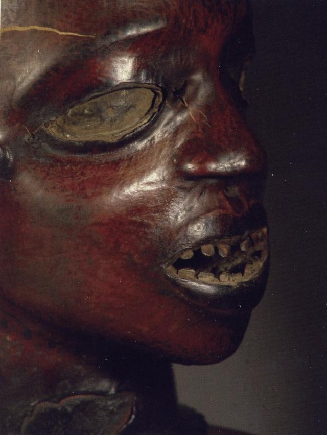 Ekoi/ Ejagham people, Ekpe society, Skin-covered wood mask headdress, Nigeria, Cross River Region Carrer15
