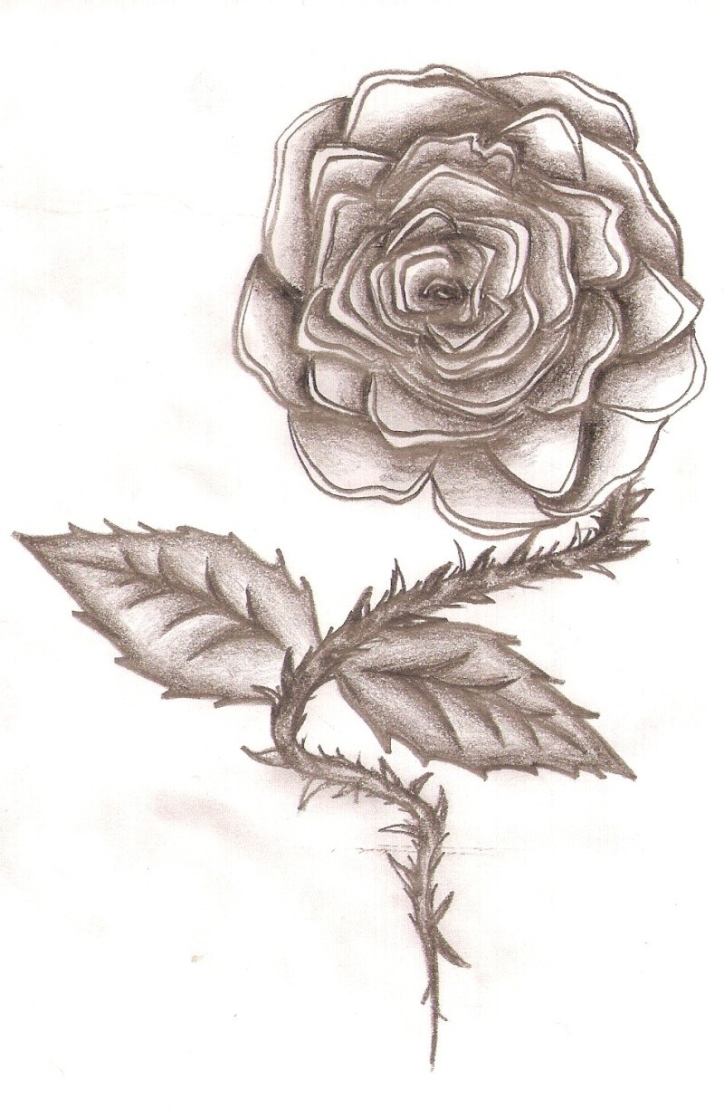 Dessins :x Rose10