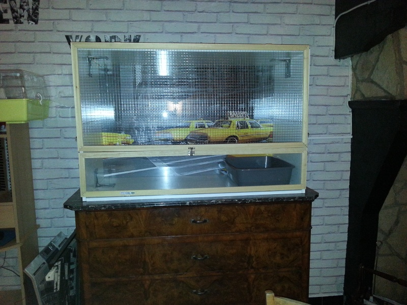 Une cage New-York 20130310
