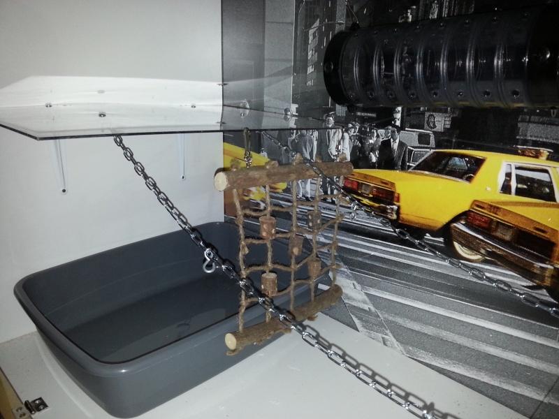 Une cage New-York 20130314