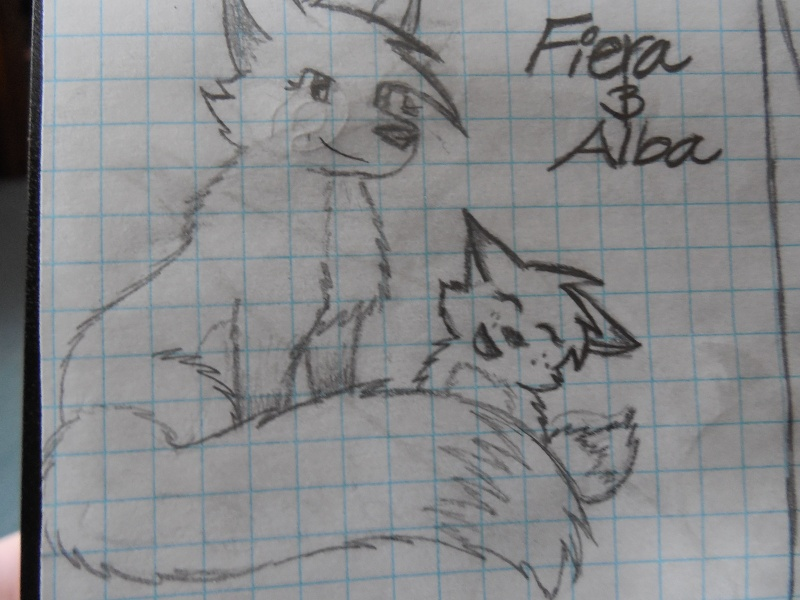 Random Drawings Fiera_10