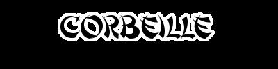 Le salon des passionnés Corbei10