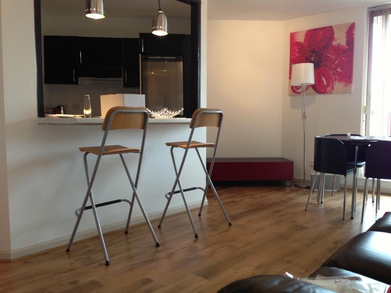 Salon avec cuisine americaine Img_0110