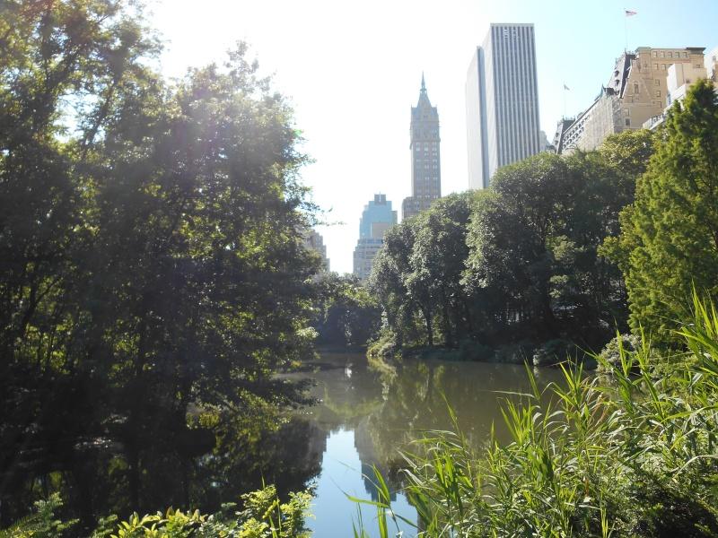 New York ! Dscn0215
