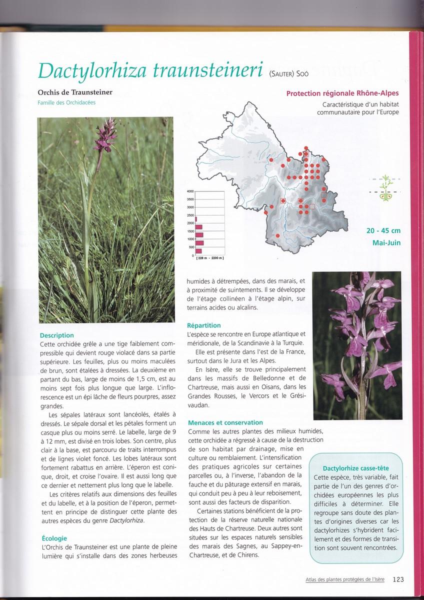 Page de l'atlas des plantes protégées de l'Isère Img_2010