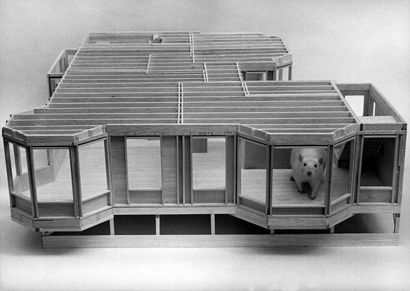cage simpa Maison10
