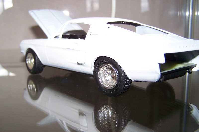 Shelby GT 500 100_5113