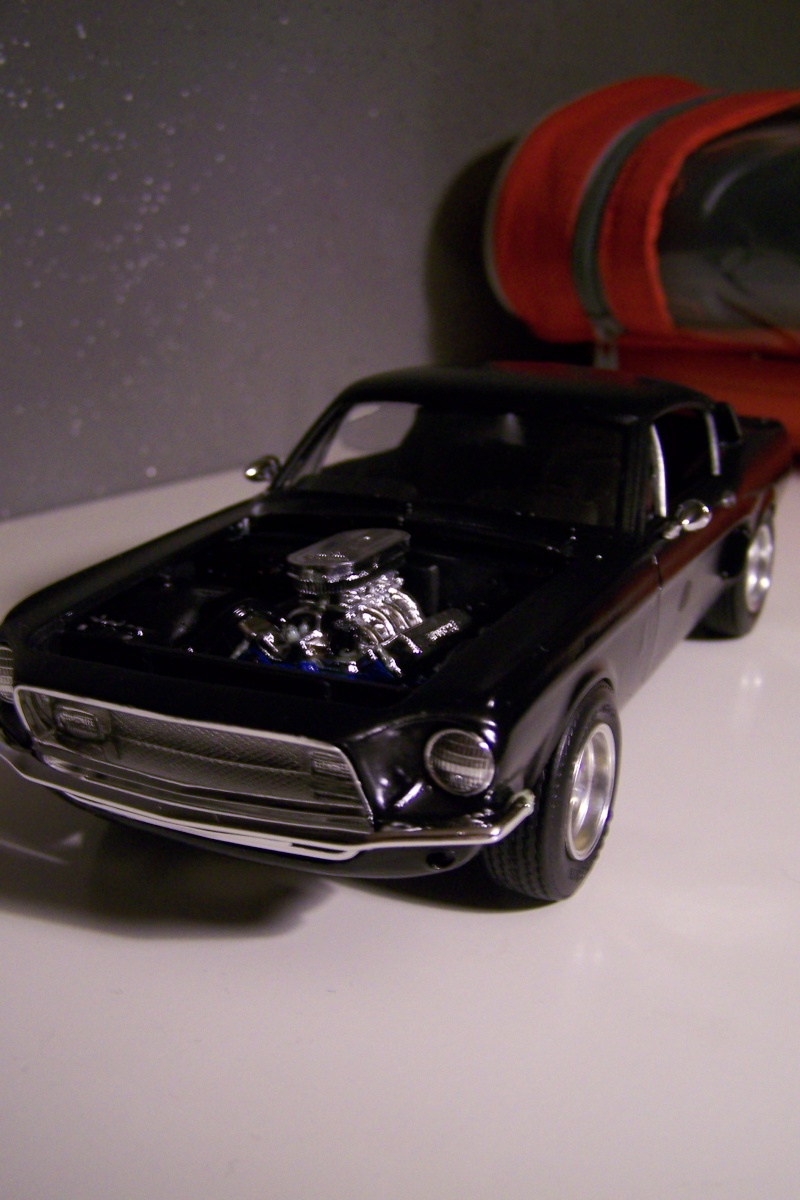 Shelby GT 500 100_5119