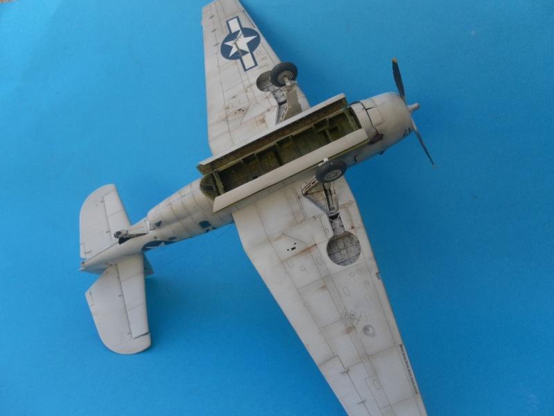TBF 1C avenger accurate miniature 1/48 Sam_9014
